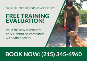 Free training evaluation!