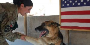 Spc Morgan Chami and Perro 072015 at Camp Nathan Smith Afghanistan