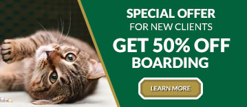 New Clients Get 50% Off Boarding