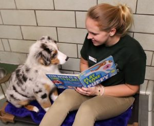 Holiday House staff member reading to dog