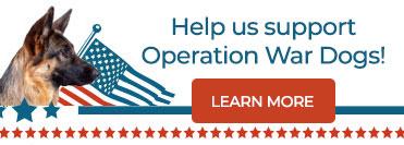 Operation War Dogs