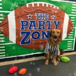 Super Puppy Bowl 2020 Rufferee